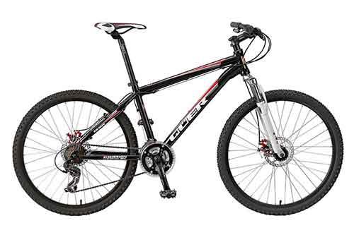 Bicicleta de Montanha/Standard Mountain Bike