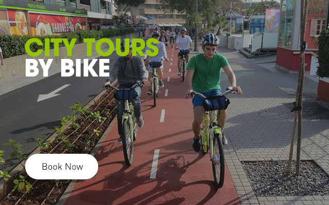 City Tours by Bike in Funchal, Câmara de Lobos