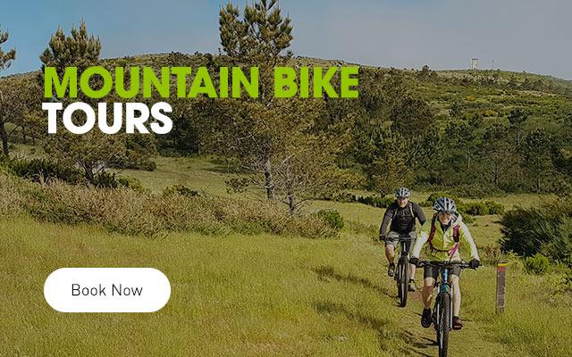 Mountain Bike Tours | Passeio de Bicicleta na Montanha, Ilha da Madeira