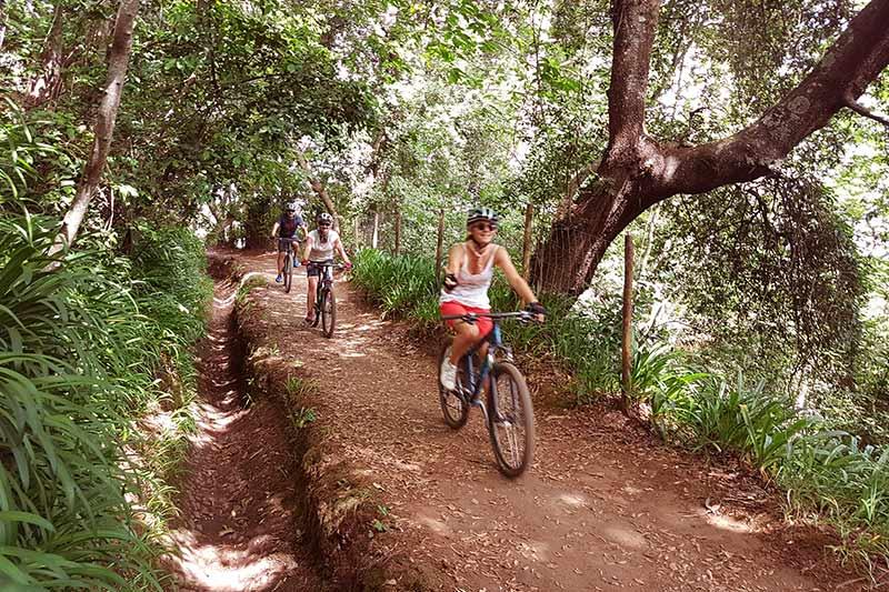 BIKE MOUNTAIN TOUR - Pico do Arieiro - Funchal